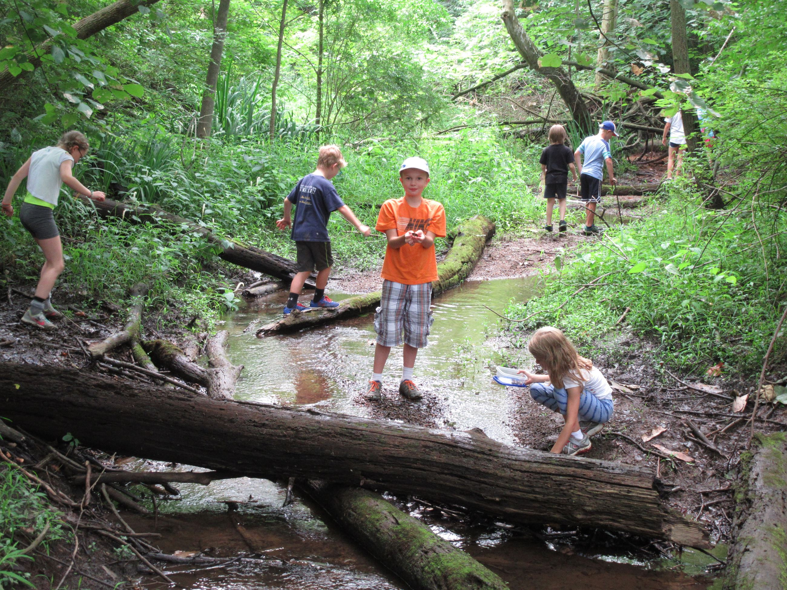 Kids explore a creek during Outdoor Adventures Day Camp